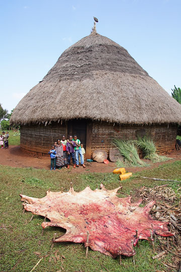 Drying the hide of a bull which was slaughtered for the Meskel celebration at Deber Tabor, 2012