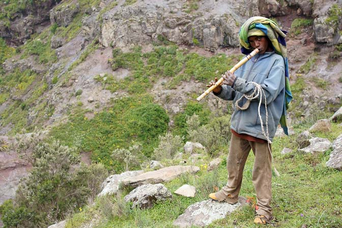 Shepherd plays a cane flute, Simien Mountains National Park 2012