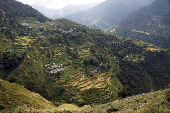 Terraces and cultivated fields in Ala, Roopkund trek 2011
