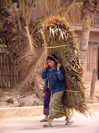 A local woman carrying rattan, along the road from Luang Namtha to Huayxai 2007