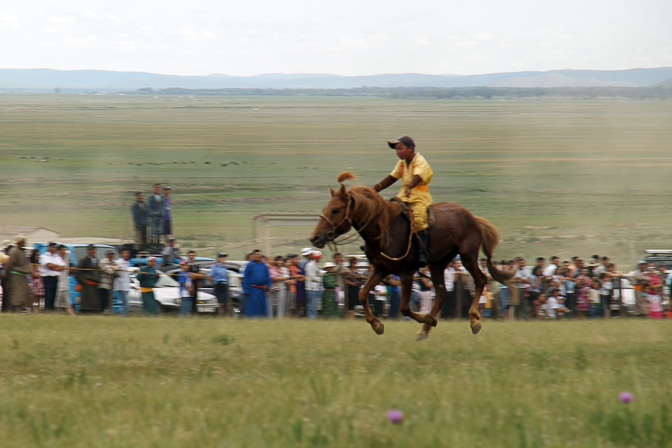 A horse reaching the racing finish line, Tsetserleg 2010