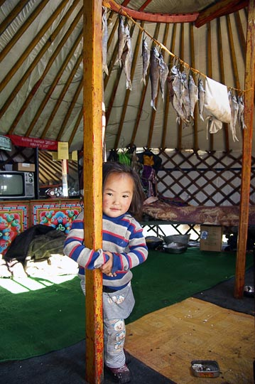 A cute girl inside her family Ger (Mongolian home tent) in Khovsgol Nuur (lake), North Mongolia 2010