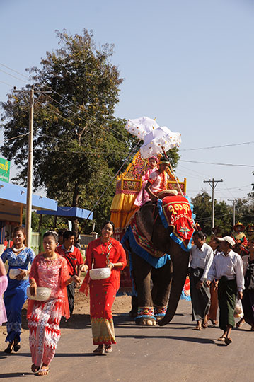Adorned elephant in The Buddhist Donation Ceremony parade, Popa 2015