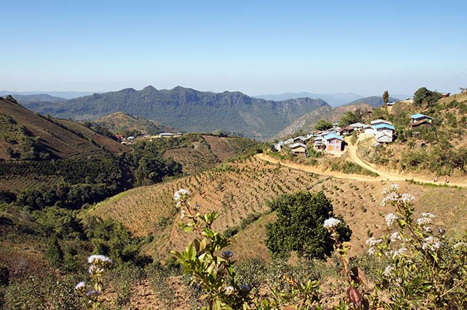 Tar Yaw village surrounded by plantations, Kalaw to Inle Lake trek 2015
