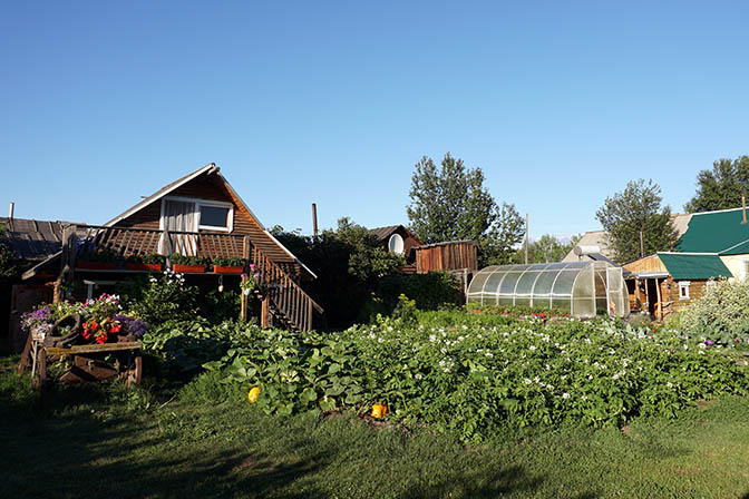 Rich vegetable garden in Kozyrevsk village, 2016