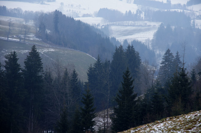 Snowy landscape, The Black Forest 2013