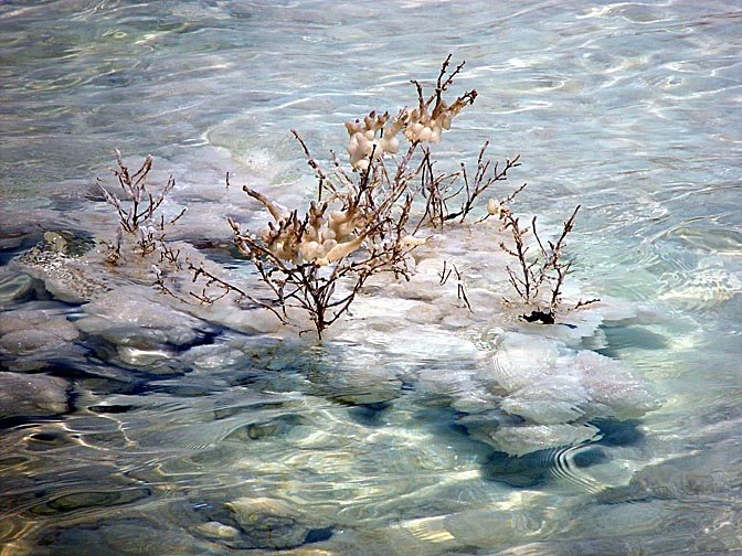 Salt crystals in the Dead Sea, Neve Zohar 2003