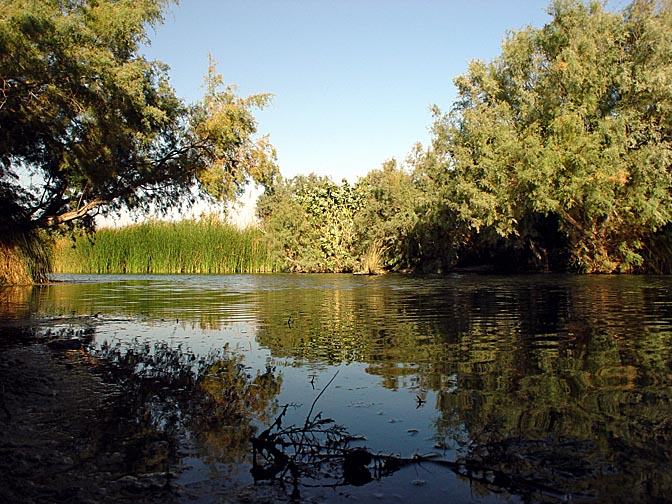 Amnon Lake, The Hidden Oasis of Einot Zukim (Ein Feshka) nature reserve 2003