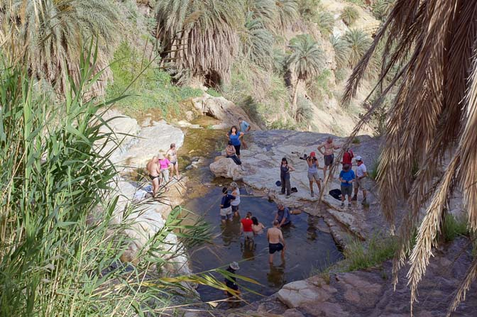Shapirit group members are dipping in the fresh water at the top of a waterfall in Wadi Manshala, 2012