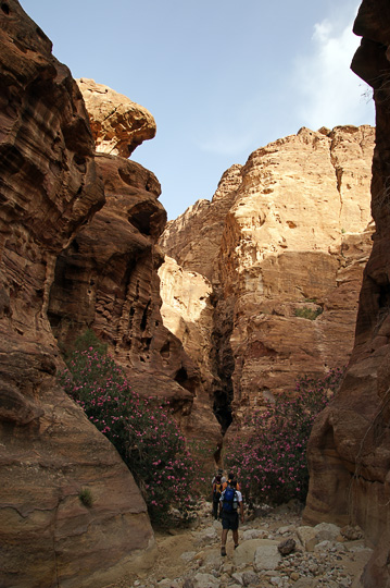 The impressive sandstone gorge of Wadi Abu el-'Uruq, 2010