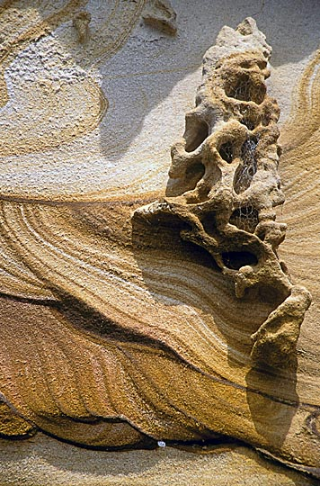 Sand formations on Dangar Island, North Sydney, New South Wales 1999