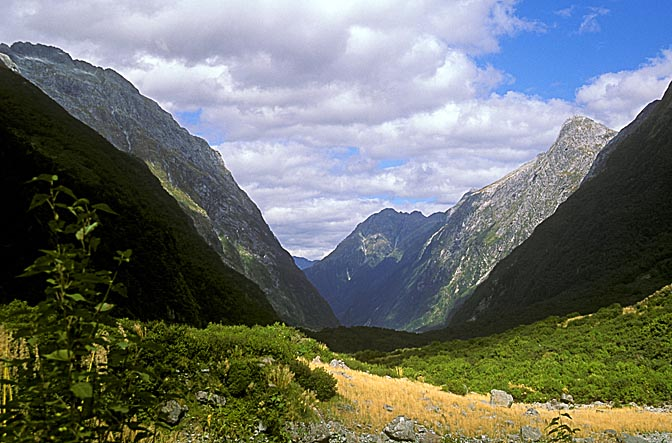 The view along the Milford Track, the South Island 1999