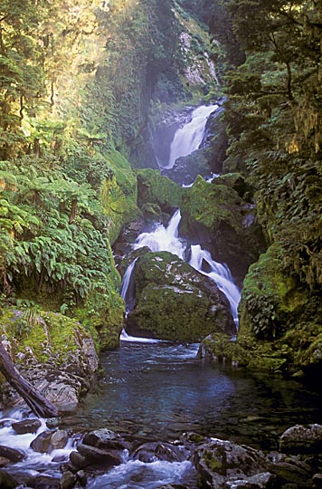Mackay Falls, the Milford Track, the South Island 1999