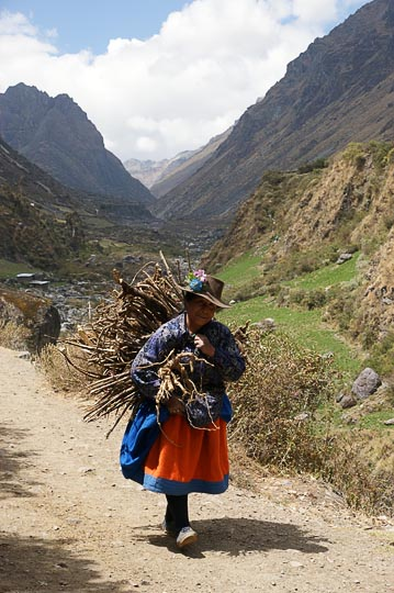 A local woman with a wide-hipped peasant skirt and flower-strewn hat, carrying firewood on her back, Huayllapa 2008
