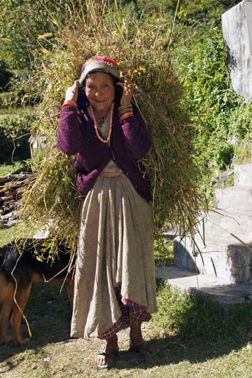 A peasant carrying a load of feed for her livestock, Pangu 2011