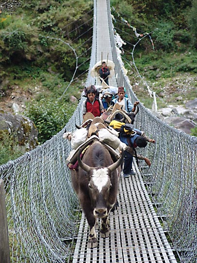 Crossing the suspension bridge over Dudh Koshi, in Phakding, 2004