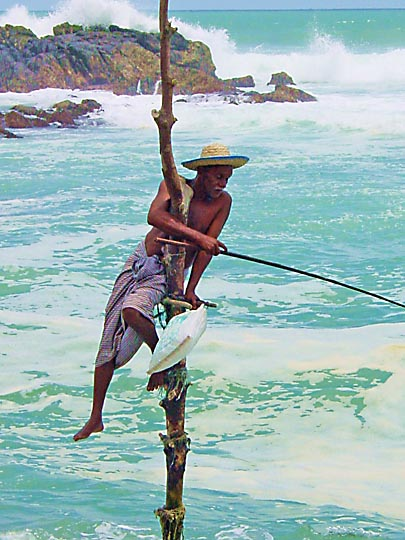A stilt fisherman in the south coast, 2002