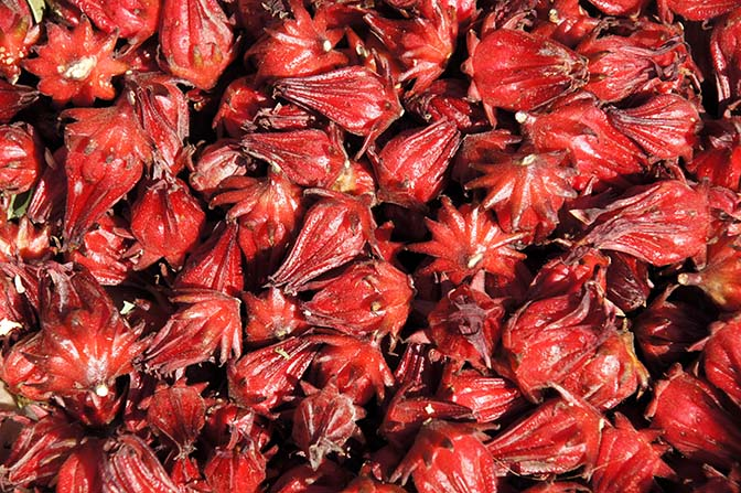 Dark red calyces of Roselle (Hibiscus sabdariffa) in Pindaya market, Myanmar 2015