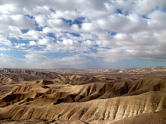 The soft landscape of  the northern Judean Desert, 2006