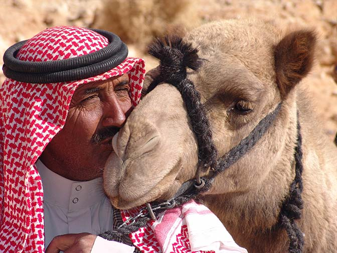 The kiss: Salim is kissing his camel Shaylan, Wadi Aheimir 2006