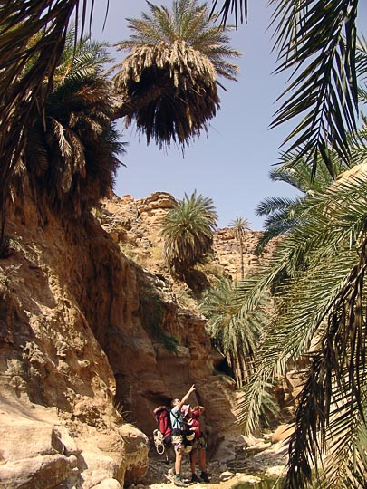 Aviv and Tamar admire the palms decorating the ravines of Wadi Manshala, 2007