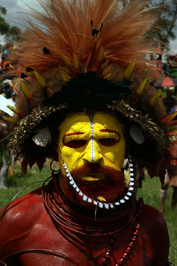 A Huli Tribe man in a Mushroom Hair wig, Mount Hagen Cultural Show 2009